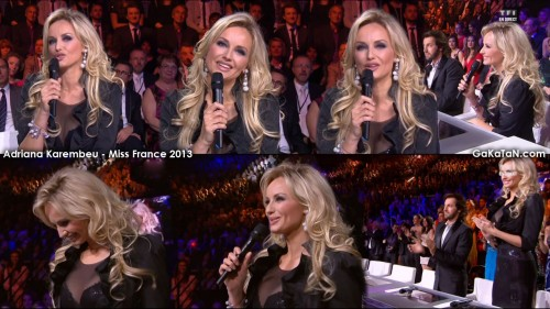 Adriana Karembeu dans la finale Miss France 2013 (photos)