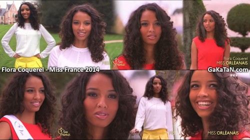 Flora Coquerel, Miss Orléanais, est Miss France 2014 (photos)