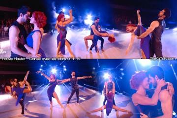 Fauve-Hautot-Miguel-Angel-Munoz-Danse-avec-les-stars-011114