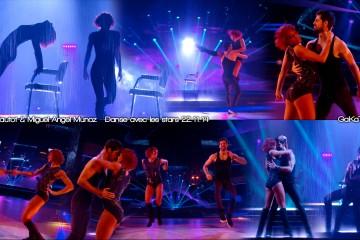 Fauve-Hautot-Miguel-Angel-Munoz-Jive-Danse-avec-les-stars-221114