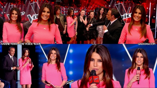 Karine-Ferri-The-Voice-110415